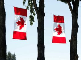 TED Fellowship Program in Canada