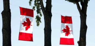 TED Fellowship Program in Canada