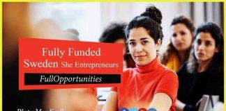Sweden She Entrepreneurs