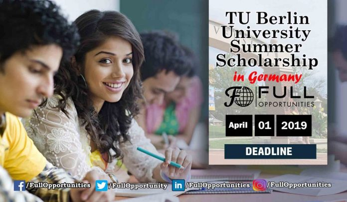 TU Berlin University Summer Scholarship