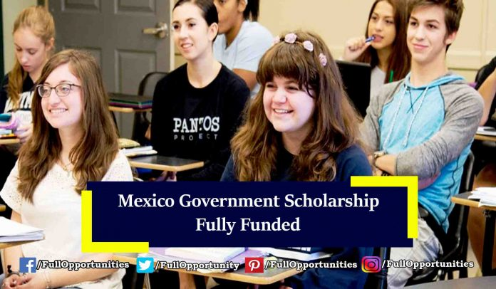 Mexico Government Scholarship