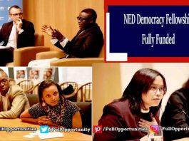 NED Democracy Fellowship