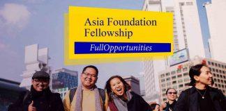 Asia Foundation Development Fellowship