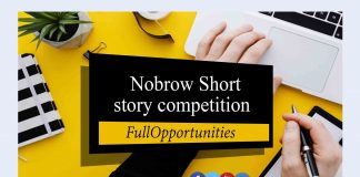 Nobrow Short Story Competition for Writers