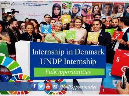 UNDP Internship in Denmark.jpg