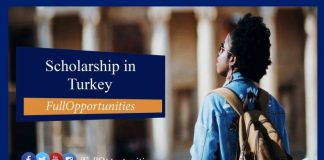 Turkish Government Success Scholarship