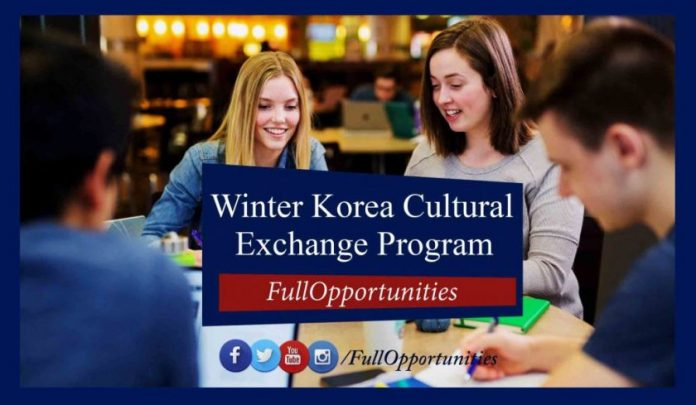 Winter Korea Cultural Exchange Program 2020 in Seoul