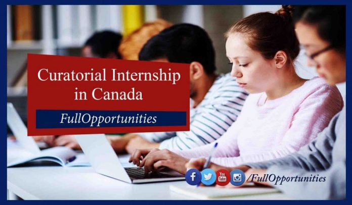 Curatorial Internship Program in Canada