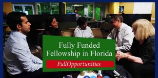 Fellowship at University of South Florida