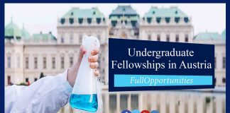 Undergraduate Fellowships in Austria