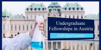 Undergraduate Fellowships in Austria