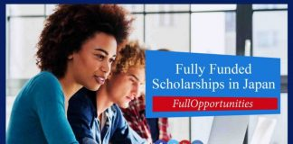 Scholarship in Toyohashi University Japan
