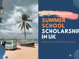 Summer School Scholarships in UK