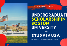 Undergraduate Scholarship in Boston