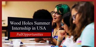 Wood Holes Summer Internship in USA