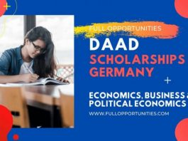 Daad German Scholarships