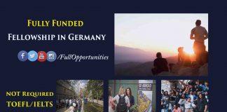 Einstein Fellowship in Germany