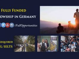 Einstein Fellowship in Germany