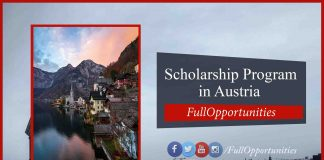 Helmut Veith Stipend Scholarship in Austria 2020