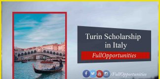 University of Turin Scholarship in Italy