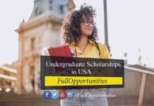 Global Wildcat Undergraduate Scholarships