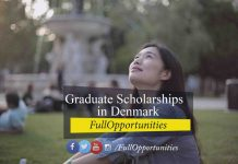 Graduate Scholarships in Denmark