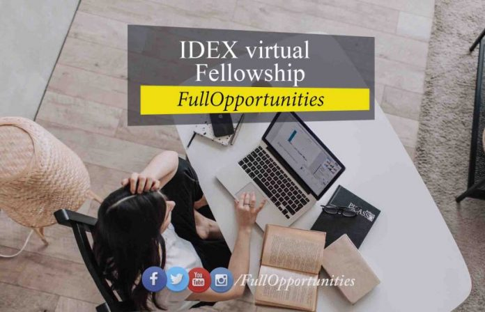 IDEX virtual fellowship