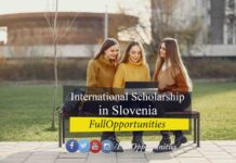 International Scholarship in Slovenia