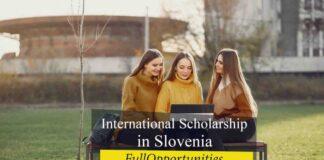 International Scholarship in Slovenia